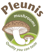 Pleunis mushrooms
